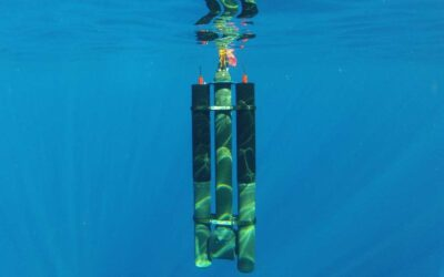 These Underwater Drones Use Water Temperature Differences To Recharge