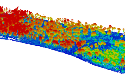 Predicting fire risk and improving forest fire management with UAV LiDAR